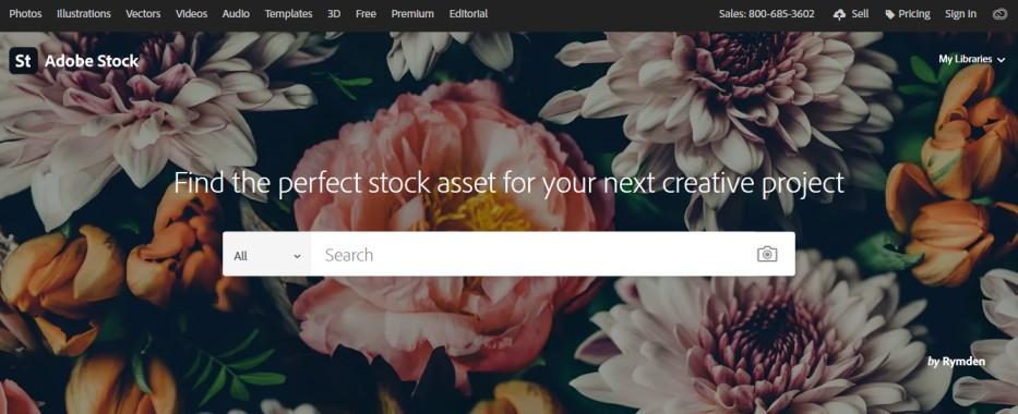 buy image online